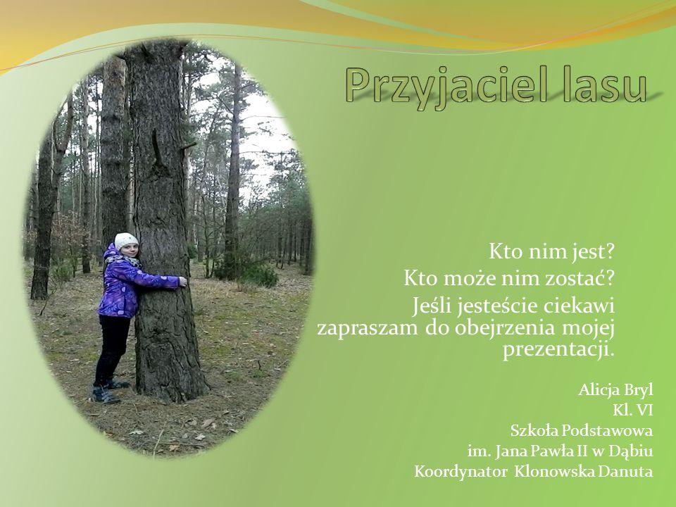 Mieszkańcy lasu Moim zdaniem najbardziej bezinteresownymi przyjaciółmi lasu są zwierzęta będące jego mieszkańcami.