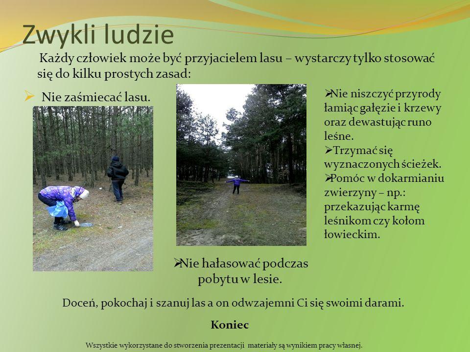 Zwykli ludzie Każdy człowiek może być przyjacielem lasu – wystarczy tylko stosować się do kilku prostych zasad:  Nie zaśmiecać lasu.  Nie hałasować