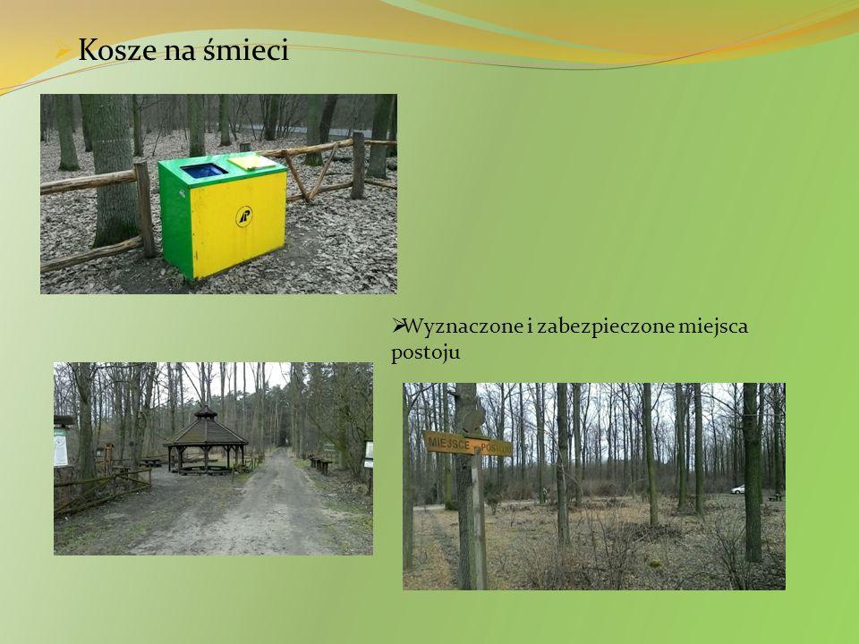  Szkółki leśne  Usuwanie drzew chorych i słabych oraz przeznaczonych na budulec