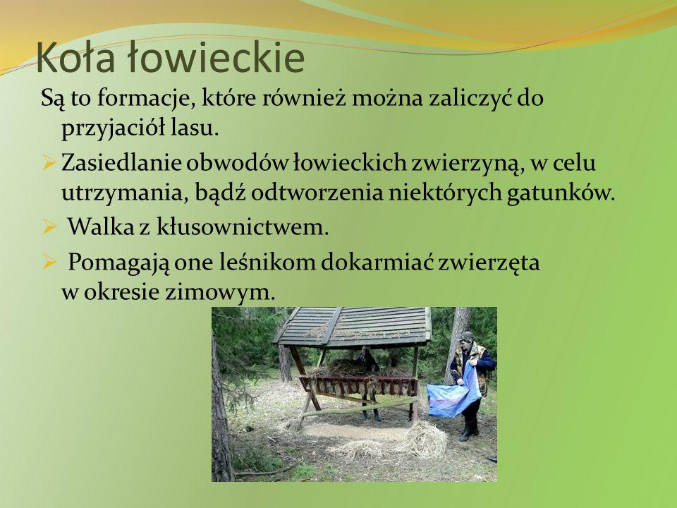 Koła łowieckie Są to formacje, które również można zaliczyć do przyjaciół lasu.  Zasiedlanie obwodów łowieckich zwierzyną, w celu utrzymania, bądź od