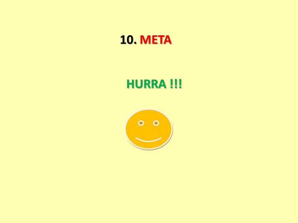 10. META HURRA !!!