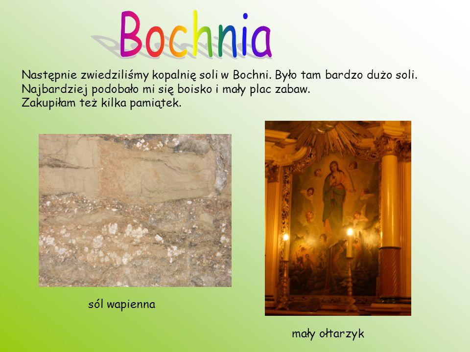 Następnie zwiedziliśmy kopalnię soli w Bochni. Było tam bardzo dużo soli. Najbardziej podobało mi się boisko i mały plac zabaw. Zakupiłam też kilka pa