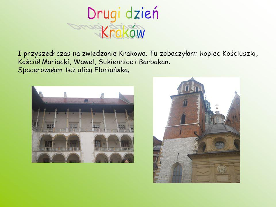 I przyszedł czas na zwiedzanie Krakowa. Tu zobaczyłam: kopiec Kościuszki, Kościół Mariacki, Wawel, Sukiennice i Barbakan. Spacerowałam też ulicą Flori