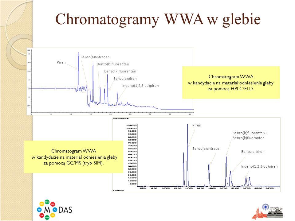 Wyniki badania jednorodności gleby ZwiązekCV analizy %CV WB %CV BB % Piren4,4139,3 Benzo(a)antracen4,92123 Benzo(b)fluoranten5,41714 Benzo(k)fluoranten5,81813 Benzo(a)piren5,0209,4 Indeno(1,2,3-cd)piren5,216