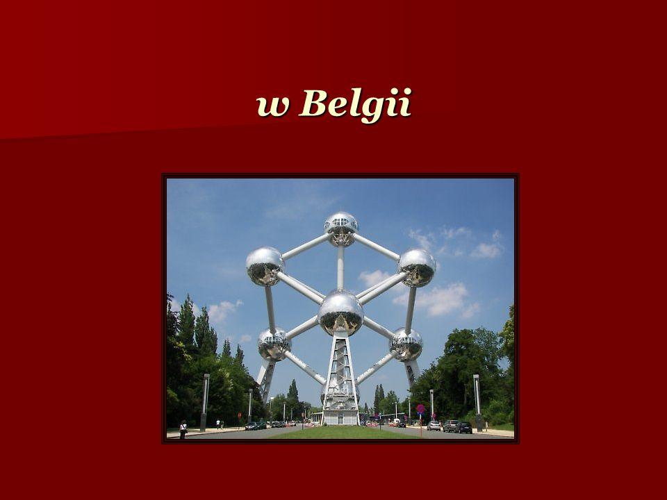 w Belgii
