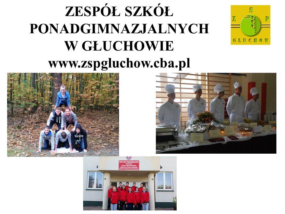 ZESPÓŁ SZKÓŁ PONADGIMNAZJALNYCH W GŁUCHOWIE www.zspgluchow.cba.pl