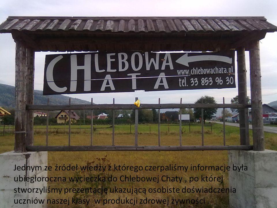 Jednym ze źródeł wiedzy z którego czerpaliśmy informacje była ubiegłoroczna wycieczka do Chlebowej Chaty, po której stworzyliśmy prezentację ukazującą