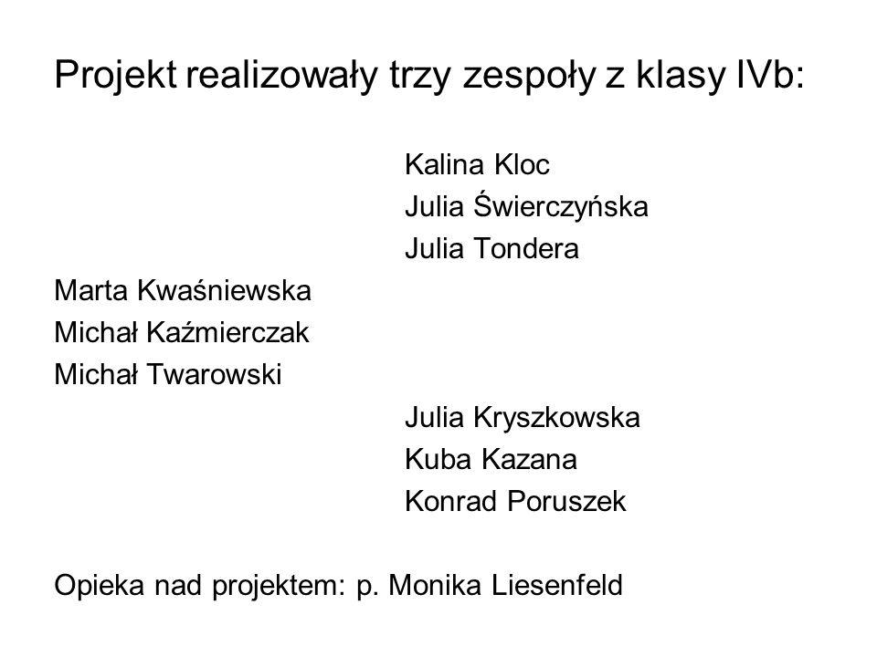 Projekt realizowały trzy zespoły z klasy IVb: Kalina Kloc Julia Świerczyńska Julia Tondera Marta Kwaśniewska Michał Kaźmierczak Michał Twarowski Julia