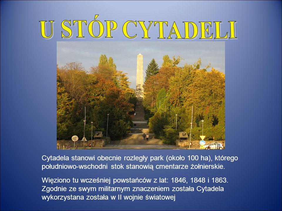 Cytadela stanowi obecnie rozległy park (około 100 ha), którego południowo-wschodni stok stanowią cmentarze żołnierskie. Więziono tu wcześniej powstańc