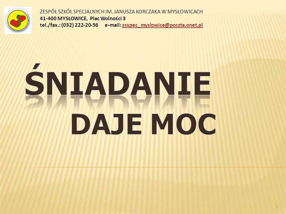 ZESPÓŁ SZKÓŁ SPECJALNYCH IM. JANUSZA KORCZAKA W MYSŁOWICACH 41-400 MYSŁOWICE, Plac Wolności 3 tel./fax.: (032) 222-20-56 e-mail: zsspec_myslowice@pocz