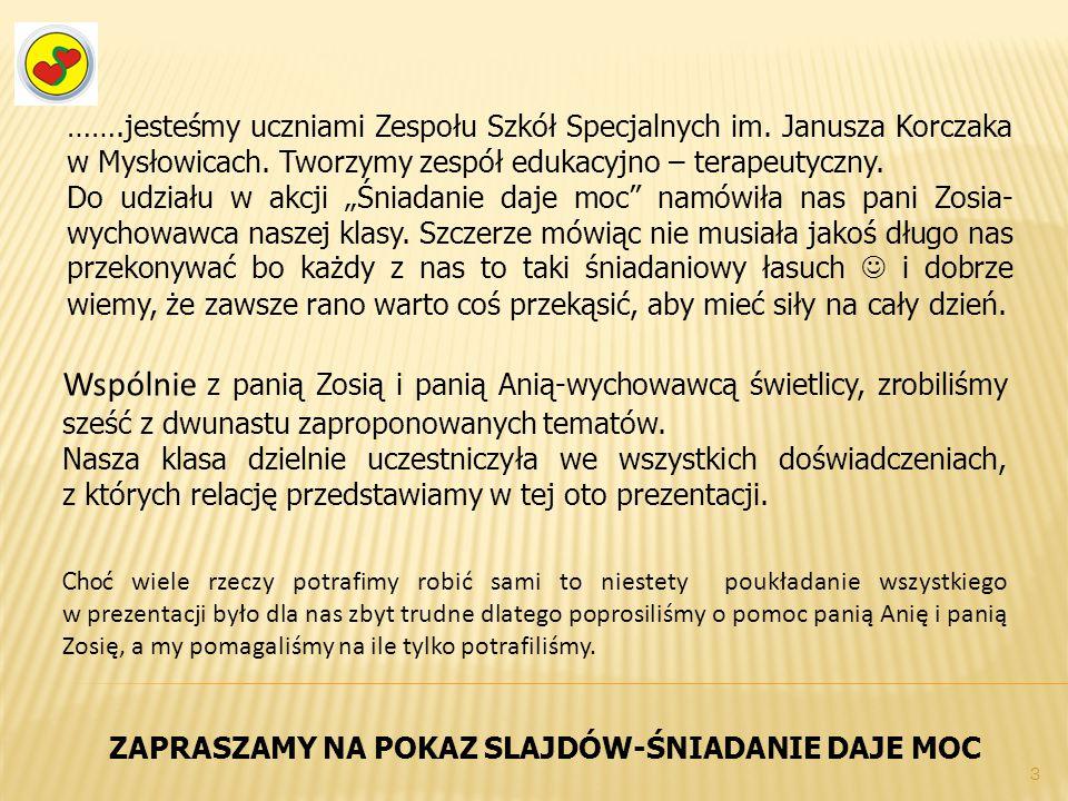 """…….jesteśmy uczniami Zespołu Szkół Specjalnych im. Janusza Korczaka w Mysłowicach. Tworzymy zespół edukacyjno – terapeutyczny. Do udziału w akcji """"Śni"""