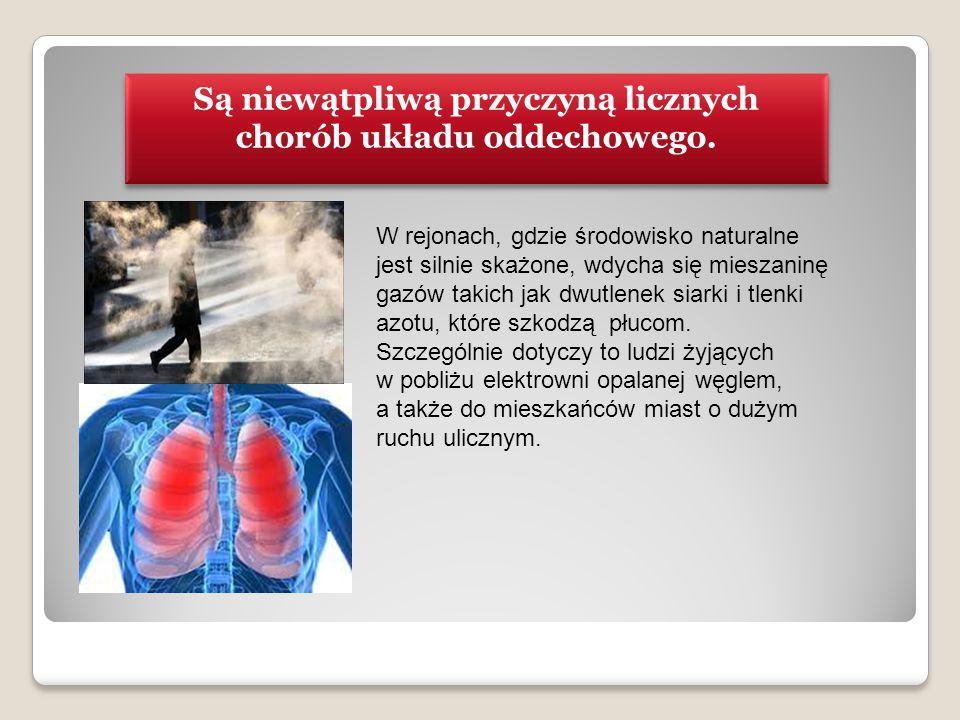 Są niewątpliwą przyczyną licznych chorób układu oddechowego. W rejonach, gdzie środowisko naturalne jest silnie skażone, wdycha się mieszaninę gazów t