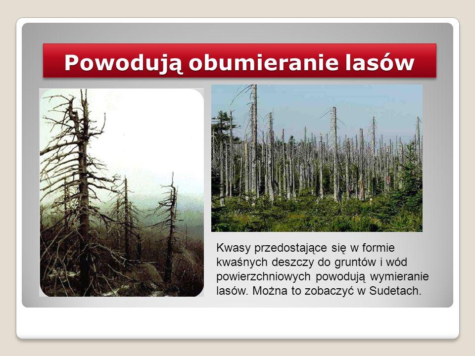 Powodują obumieranie lasów Kwasy przedostające się w formie kwaśnych deszczy do gruntów i wód powierzchniowych powodują wymieranie lasów. Można to zob