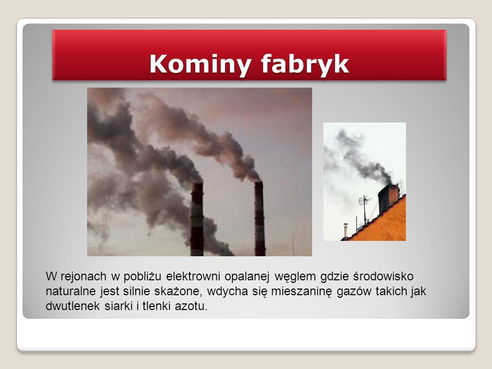 Kominy fabryk W rejonach w pobliżu elektrowni opalanej węglem gdzie środowisko naturalne jest silnie skażone, wdycha się mieszaninę gazów takich jak d
