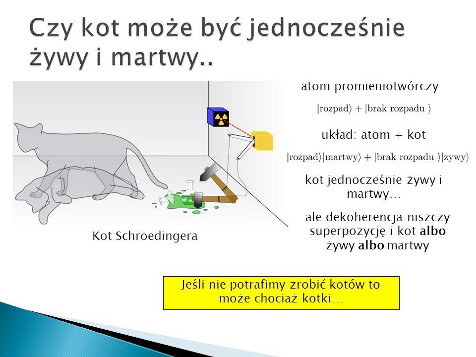 atom promieniotwórczy układ: atom + kot kot jednocześnie żywy i martwy… Kot Schroedingera Jeśli nie potrafimy zrobić kotów to może chociaż kotki… ale
