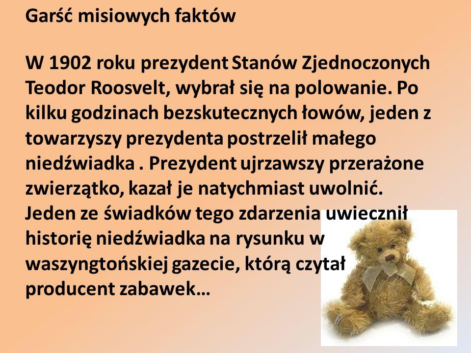 Od tego momentu zaczęto wykorzystywać zdrobniałe imię prezydenta i sprzedawać maskotki pod nazwą Teddy Bear, która dziś w języku angielskim jest określeniem wszystkich pluszowych misiów.