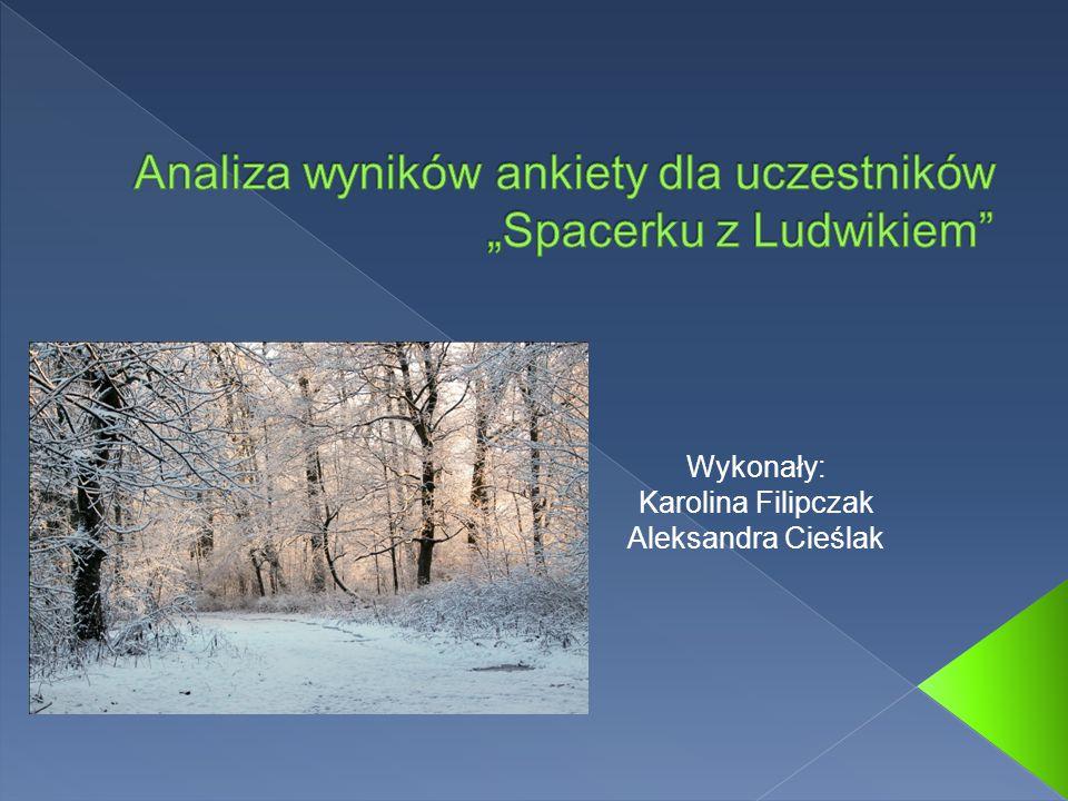 Wykonały: Karolina Filipczak Aleksandra Cieślak