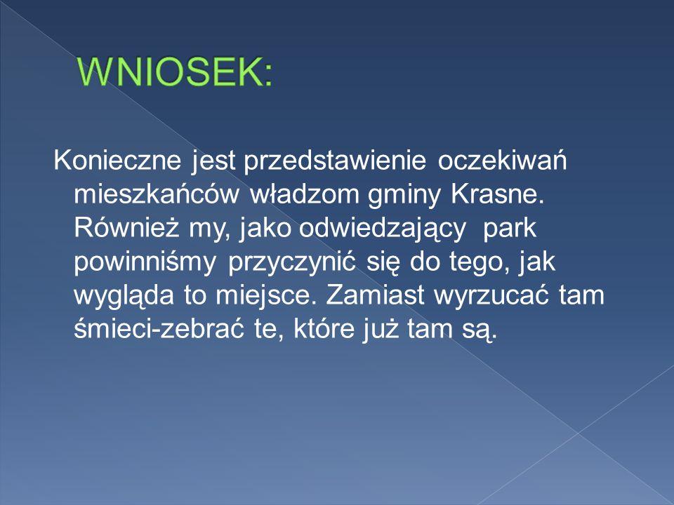 Konieczne jest przedstawienie oczekiwań mieszkańców władzom gminy Krasne.