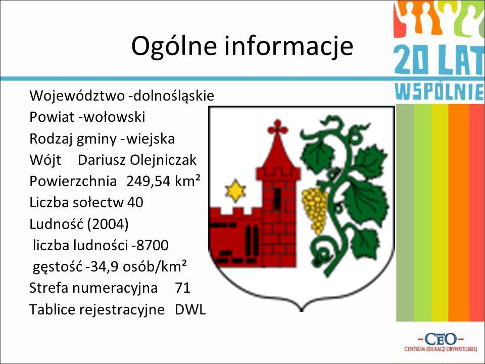 Ogólne informacje Województwo -dolnośląskie Powiat -wołowski Rodzaj gminy -wiejska Wójt Dariusz Olejniczak Powierzchnia 249,54 km² Liczba sołectw 40 L