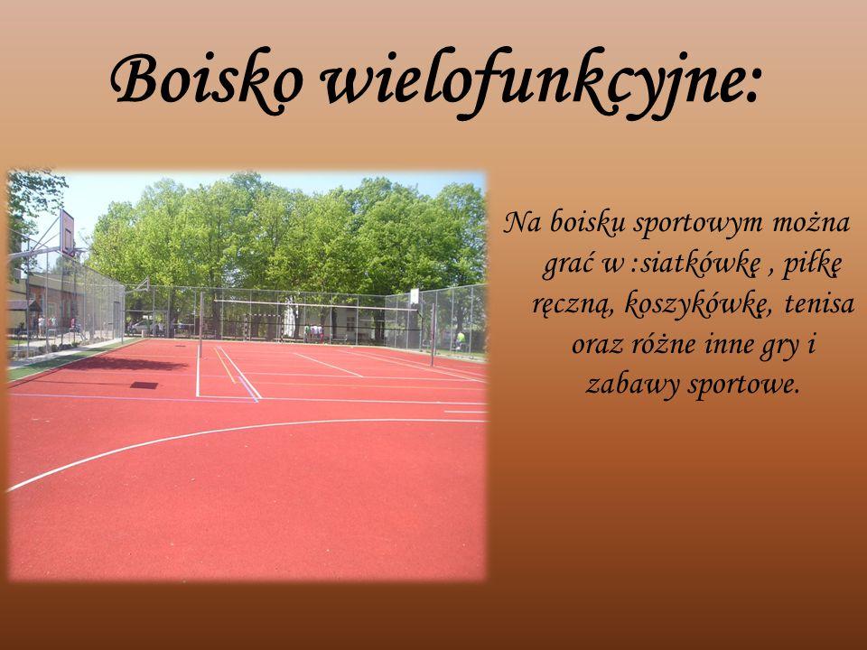Boisko wielofunkcyjne: Na boisku sportowym można grać w :siatkówkę, piłkę ręczną, koszykówkę, tenisa oraz różne inne gry i zabawy sportowe.