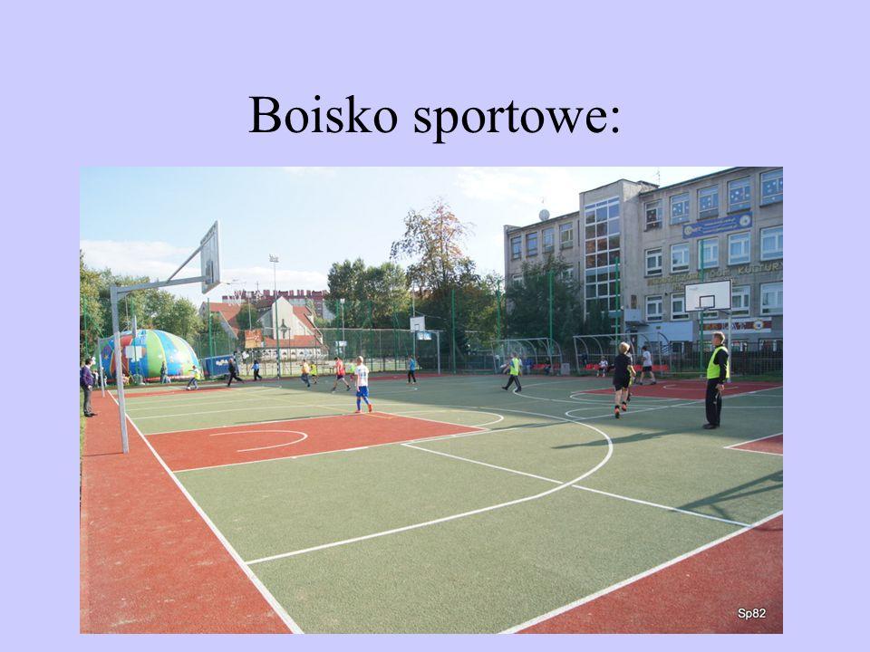 Boisko sportowe: