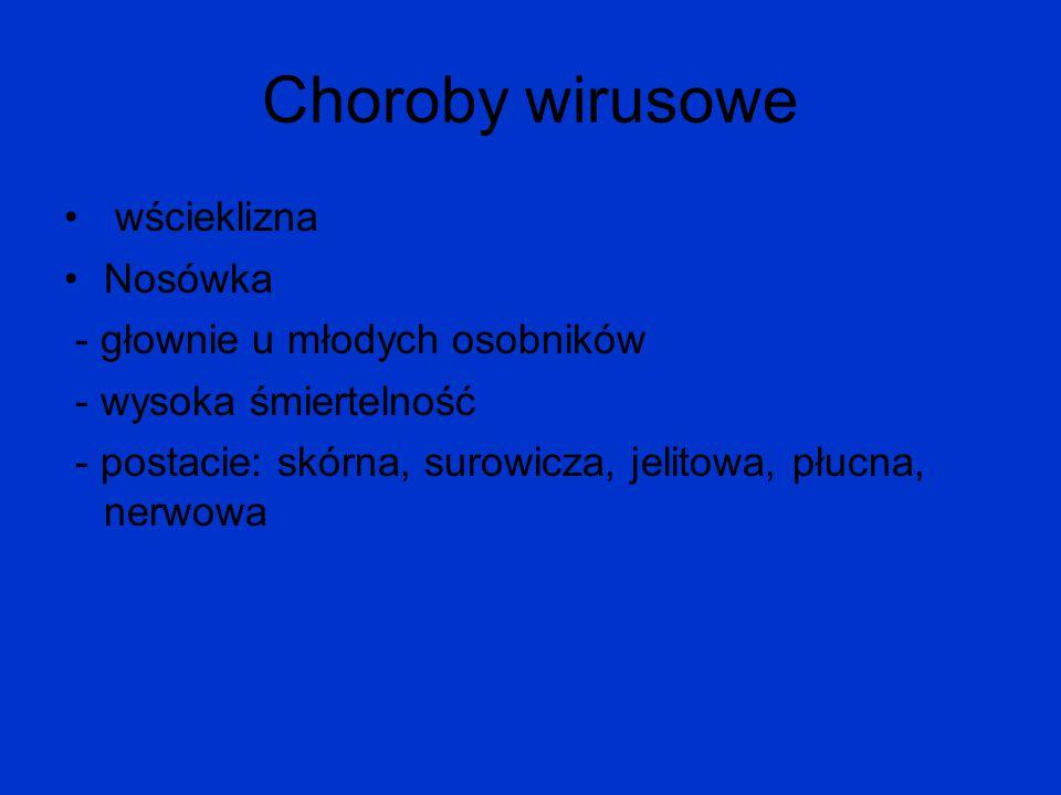 Choroby wirusowe wścieklizna Nosówka - głownie u młodych osobników - wysoka śmiertelność - postacie: skórna, surowicza, jelitowa, płucna, nerwowa