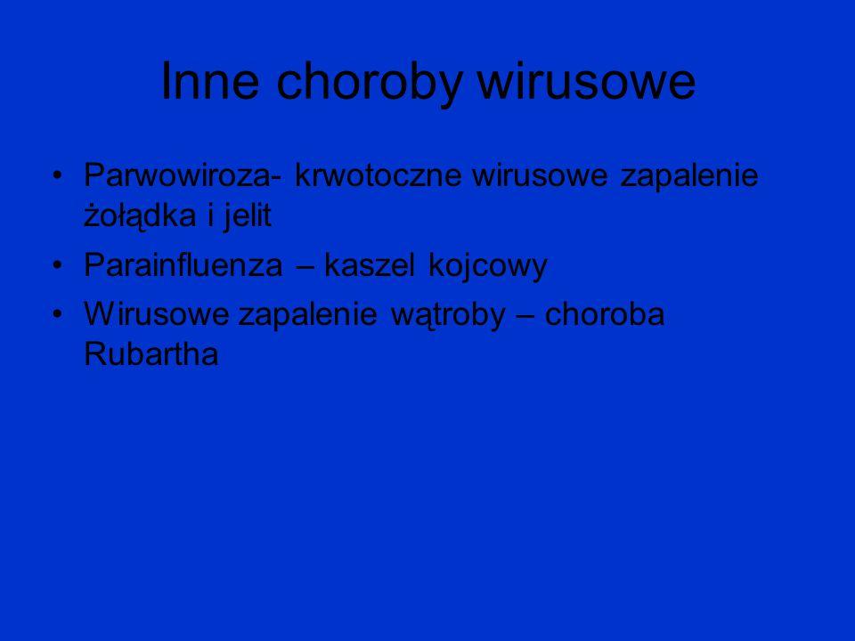 Inne choroby wirusowe Parwowiroza- krwotoczne wirusowe zapalenie żołądka i jelit Parainfluenza – kaszel kojcowy Wirusowe zapalenie wątroby – choroba R
