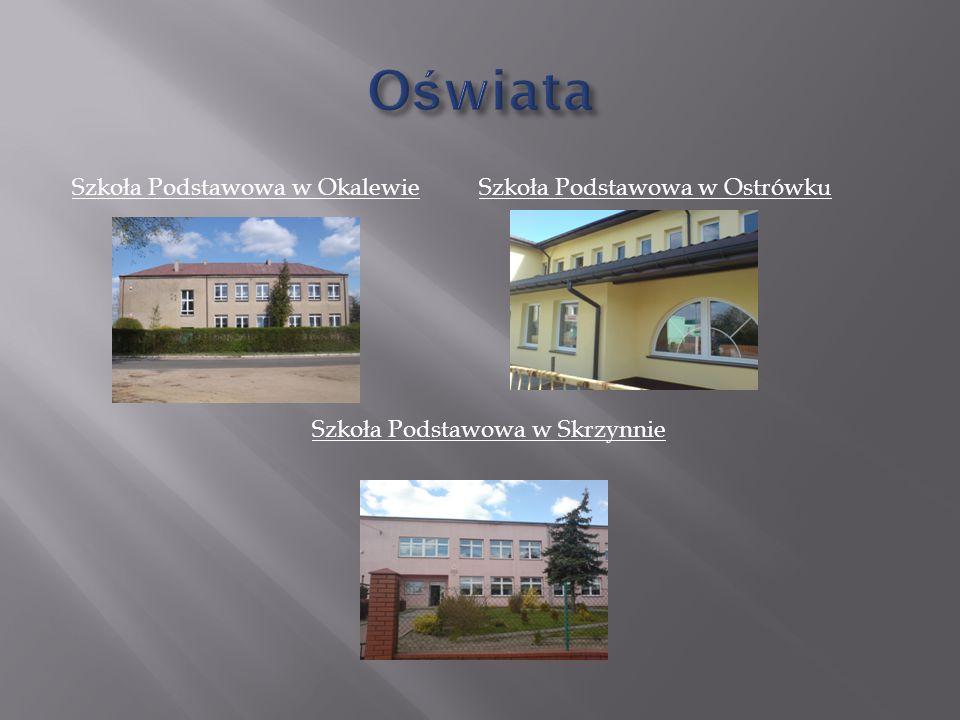 Szkoła Podstawowa w Okalewie Szkoła Podstawowa w Ostrówku Szkoła Podstawowa w Skrzynnie