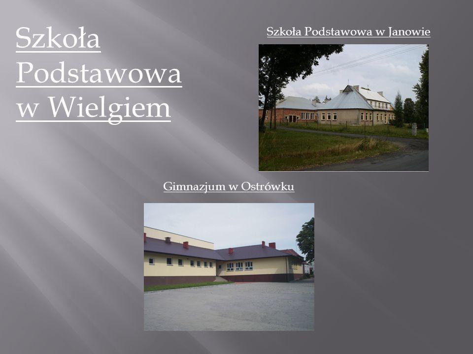 Szkoła Podstawowa w Wielgiem Szkoła Podstawowa w Janowie Gimnazjum w Ostrówku