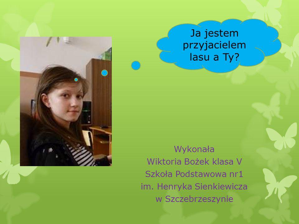 Wykonała Wiktoria Bożek klasa V Szkoła Podstawowa nr1 im.