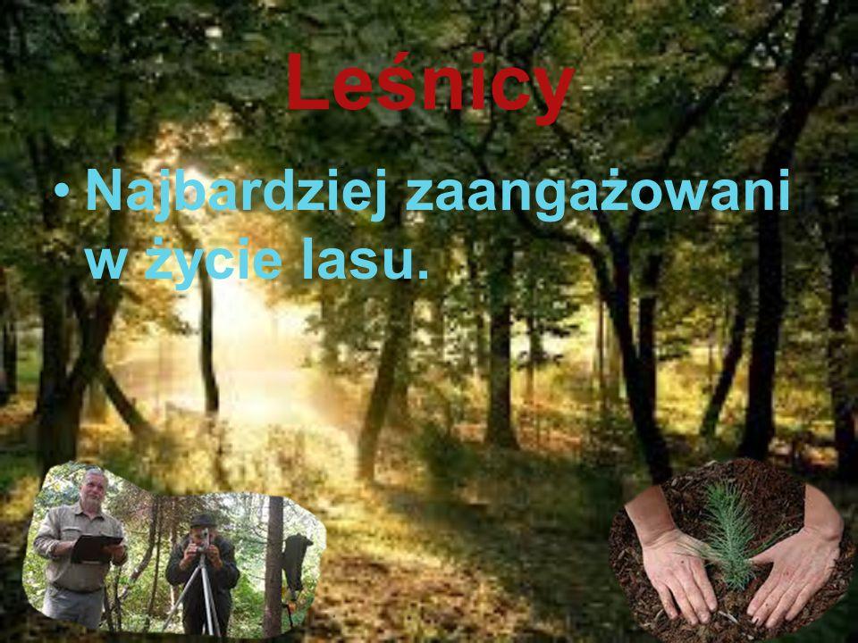 Leśnicy Najbardziej zaangażowani w życie lasu.