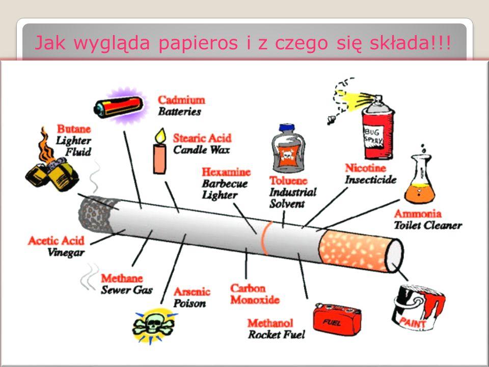 Jak wygląda papieros i z czego się składa!!!