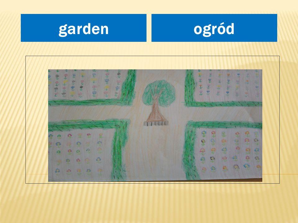 miejsce na rysunek ogródgarden
