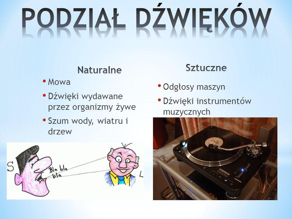 Mowa Dźwięki wydawane przez organizmy żywe Szum wody, wiatru i drzew Odgłosy maszyn Dźwięki instrumentów muzycznych