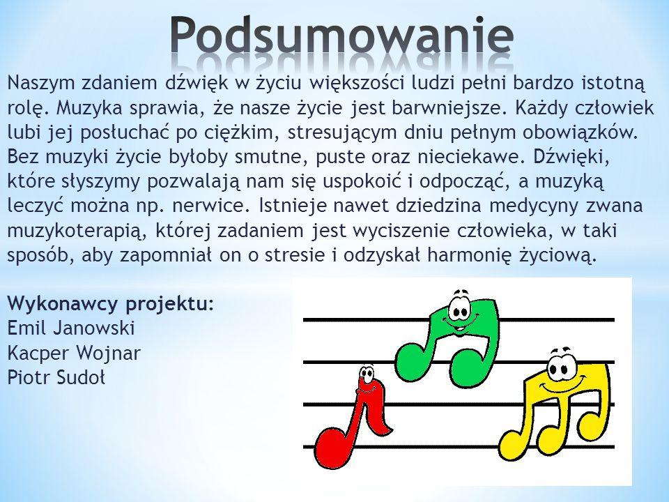 Naszym zdaniem dźwięk w życiu większości ludzi pełni bardzo istotną rolę. Muzyka sprawia, że nasze życie jest barwniejsze. Każdy człowiek lubi jej pos
