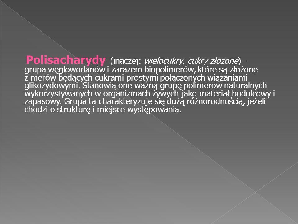 Polisacharydy (inaczej: wielocukry, cukry złożone) – grupa węglowodanów i zarazem biopolimerów, które są złożone z merów będących cukrami prostymi poł
