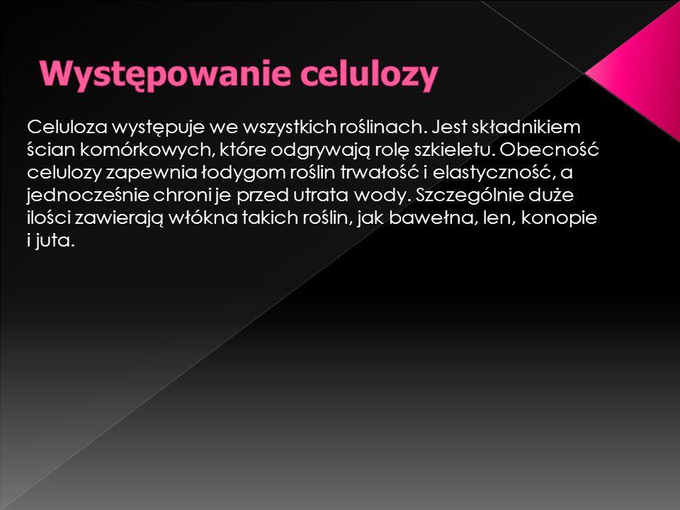 Celuloza występuje we wszystkich roślinach. Jest składnikiem ścian komórkowych, które odgrywają rolę szkieletu. Obecność celulozy zapewnia łodygom roś