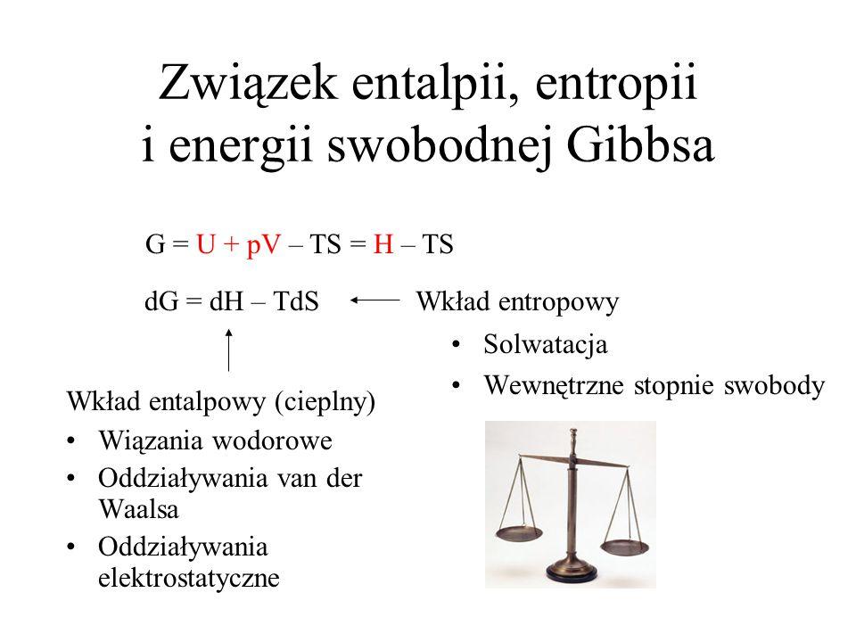 G = U + pV – TS = H – TS Związek entalpii, entropii i energii swobodnej Gibbsa Wiązania wodorowe Oddziaływania van der Waalsa Oddziaływania elektrostatyczne Solwatacja Wewnętrzne stopnie swobody dG = dH – TdS Wkład entalpowy (cieplny) Wkład entropowy