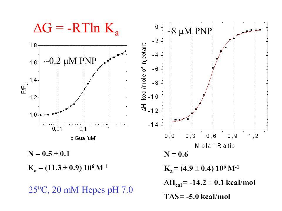  G = -RTln K a N = 0.6 K a = (4.9  0.4) 10 6 M -1  H cal = -14.2  0.1 kcal/mol  S = -5.0 kcal/mol ~8  M PNP 25 0 C, 20 mM Hepes pH 7.0 N = 0.5