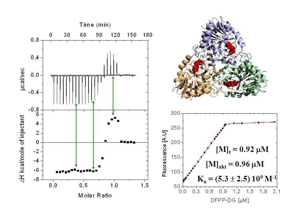 [M] t = 0.92  M [M] akt = 0.96  M K a = (5.3  2.5) 10 9 M -1
