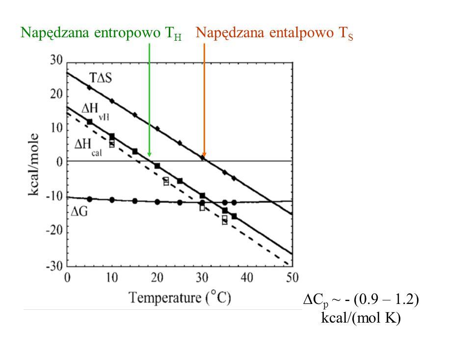  C p ~ - (0.9 – 1.2) kcal/(mol K) Napędzana entropowo T H Napędzana entalpowo T S