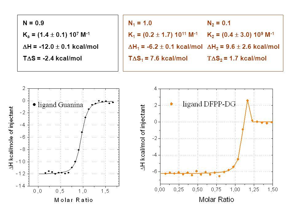 N = 0.9 K a = (1.4  0.1) 10 7 M -1  H = -12.0  0.1 kcal/mol T  S = -2.4 kcal/mol N 1 = 1.0 K 1 = (0.2  1.7) 10 11 M -1  H 1 = -6.2  0.1 kcal/mol T  S 1 = 7.6 kcal/mol N 2 = 0.1 K 2 = (0.4  3.0) 10 9 M -1  H 2 = 9.6  2.6 kcal/mol  S 2 = 1.7 kcal/mol  ligand Guanina
