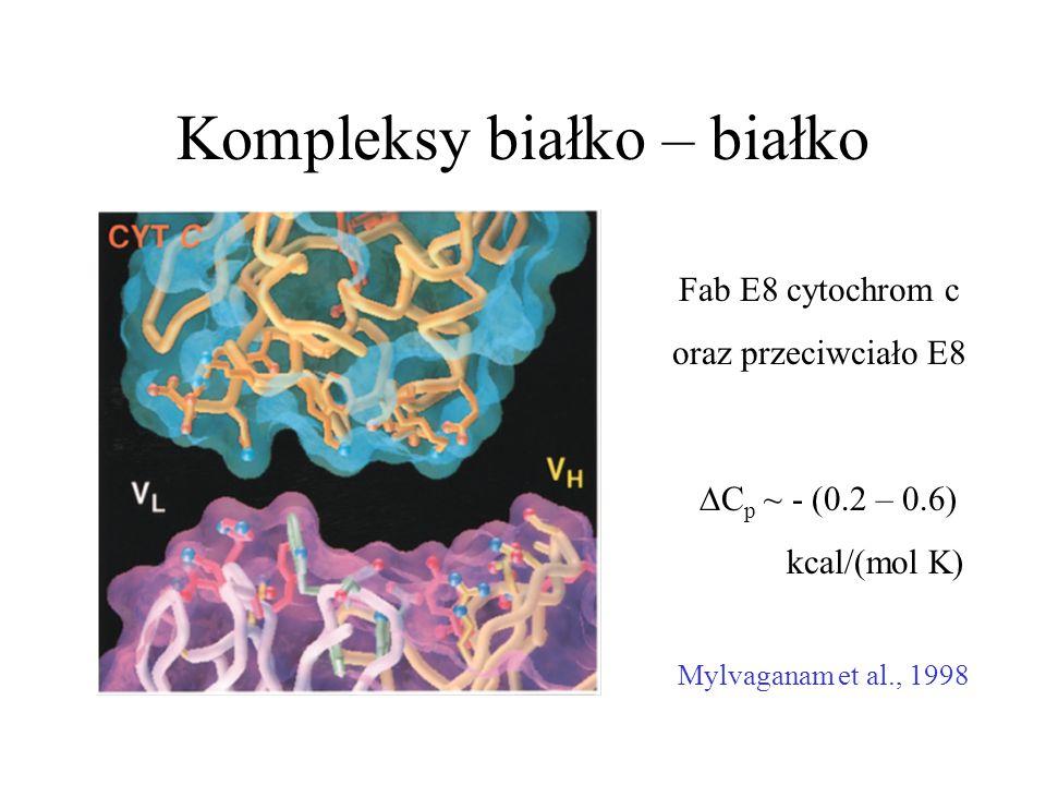 Kompleksy białko – białko Fab E8 cytochrom c oraz przeciwciało E8 Mylvaganam et al., 1998  C p ~ - (0.2 – 0.6) kcal/(mol K)