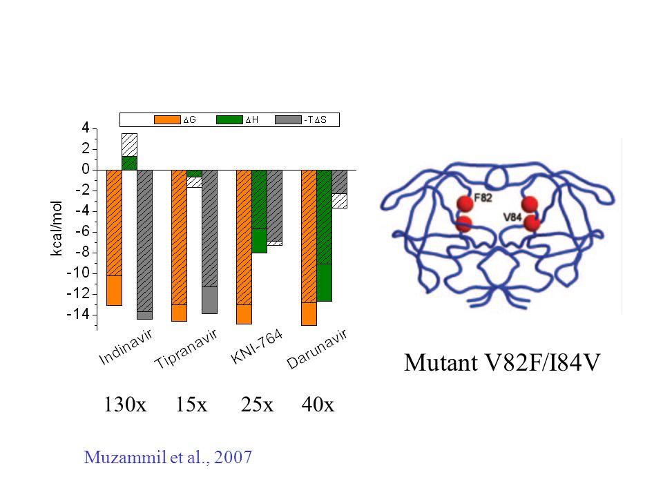 Muzammil et al., 2007 Mutant V82F/I84V 130x 15x 25x 40x
