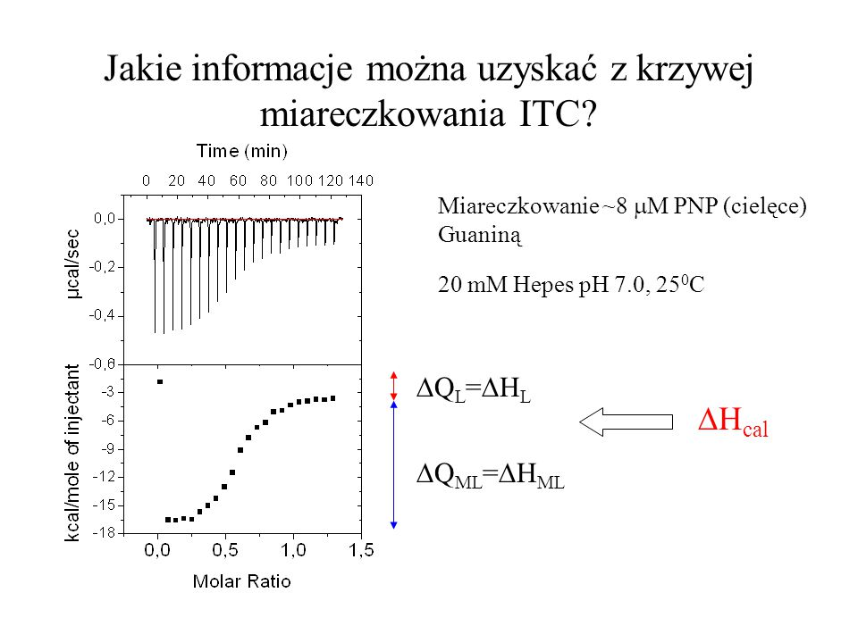 Jakie informacje można uzyskać z krzywej miareczkowania ITC? QL=HLQL=HL  Q ML =  H ML  H cal Miareczkowanie ~8  M PNP (cielęce) Guaniną 20 mM