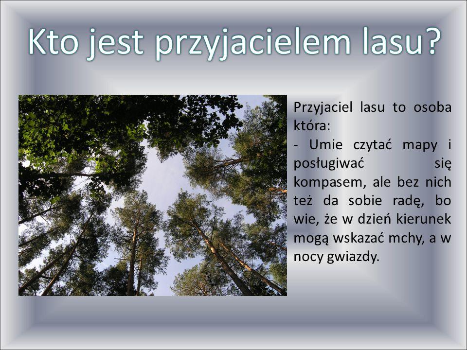Stara się patrzeć na las z perspektywy zwierząt, bo wie, ze las to przede wszystkich ich dom, a potem dopiero miejsce dla człowieka.