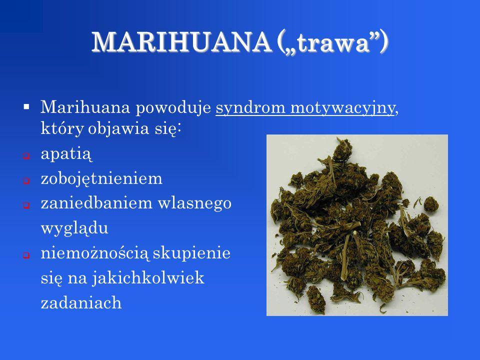  Marihuana powoduje syndrom motywacyjny, który objawia się:  apatią  zobojętnieniem  zaniedbaniem wlasnego wyglądu  niemożnością skupienie się na