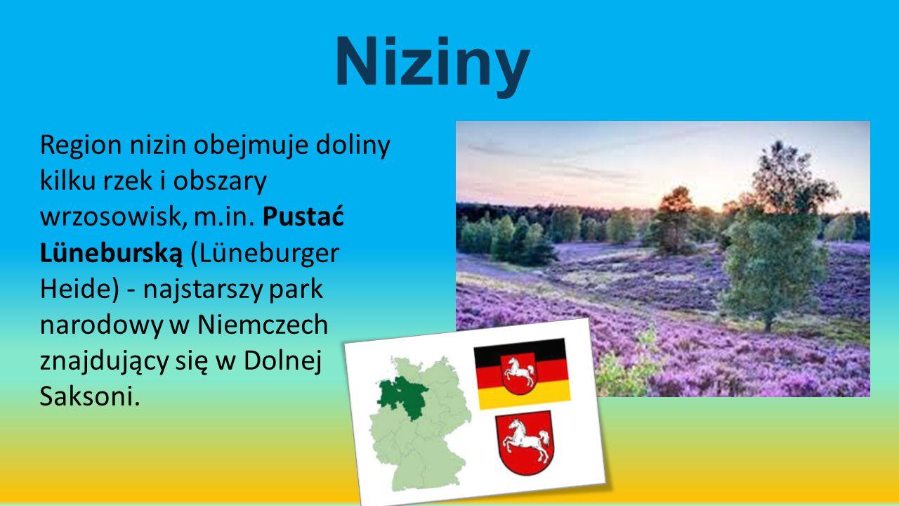 Niziny Region nizin obejmuje doliny kilku rzek i obszary wrzosowisk, m.in. Pustać Lüneburską (Lüneburger Heide) - najstarszy park narodowy w Niemczech