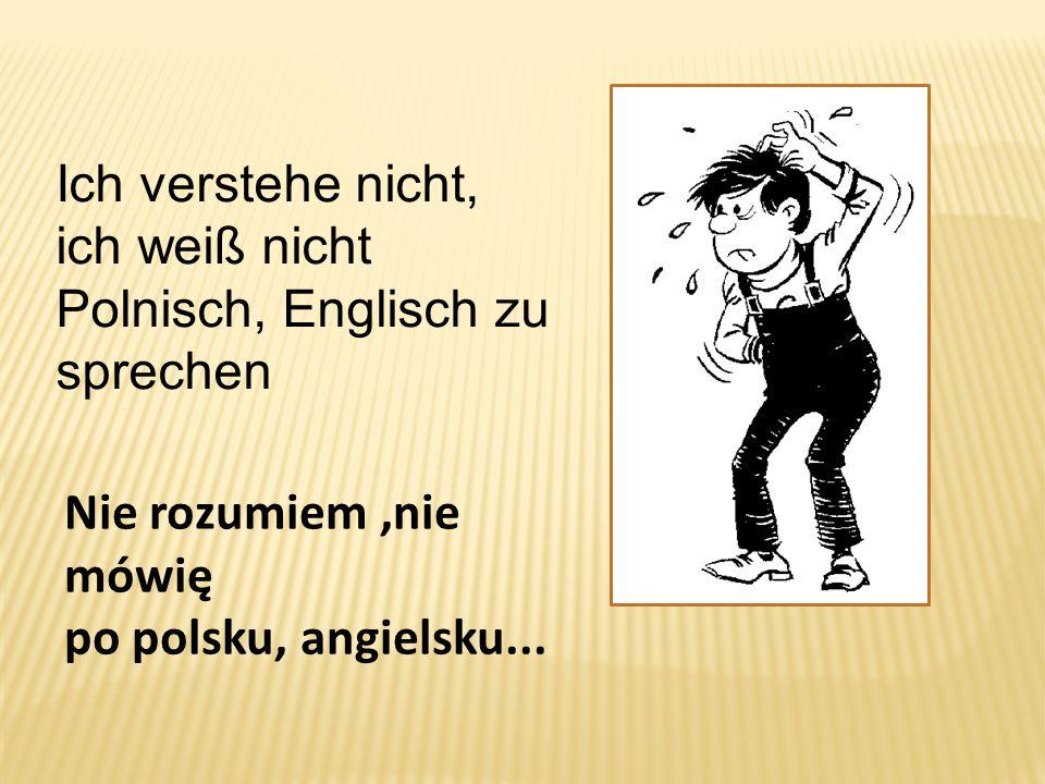 Nie rozumiem,nie mówię po polsku, angielsku... Ich verstehe nicht, ich weiß nicht Polnisch, Englisch zu sprechen