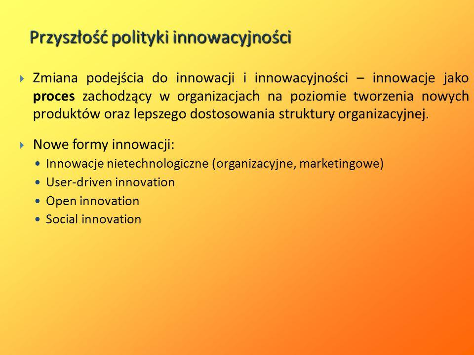Przyszłość polityki innowacyjności  Zmiana podejścia do innowacji i innowacyjności – innowacje jako proces zachodzący w organizacjach na poziomie tworzenia nowych produktów oraz lepszego dostosowania struktury organizacyjnej.